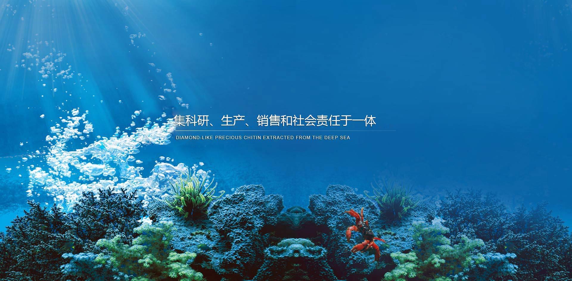 潍坊盈珂海洋生物材料有限公司